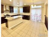 10609 Ouray Ct - Photo 8