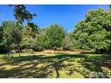 547 Linden Park Dr - Photo 13
