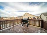 1806 87th Ave - Photo 24