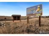 4708 Prairie Vista Dr - Photo 39