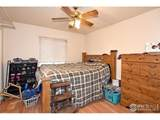 4560 Dinosaur Ct - Photo 16