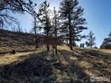 1510 Meadow Mountain Dr - Photo 6