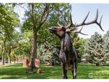 1208 Cedar Dr - Photo 35
