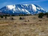 34 Majors Ranch - Photo 3