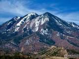 34 Majors Ranch - Photo 4