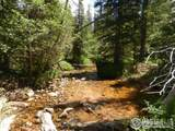 0 Forest Service 169 Rd - Photo 2