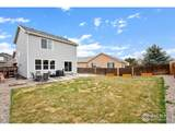 2543 Carriage Dr - Photo 38