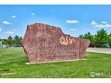 4611 Bella Vista Dr - Photo 38