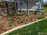 1712 51st Ave - Photo 33