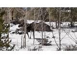 106 Marmot Dr - Photo 4