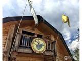 66 Blue Spruce Dr - Photo 31