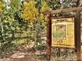 66 Blue Spruce Dr - Photo 40