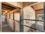 3325 Turnberry Rd - Photo 28