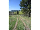 126 Fossil Ct - Photo 5