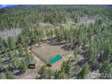 458 Alpine Elk Ranch Ln - Photo 28