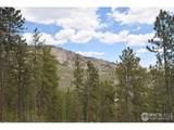 2820 Storm Mountain Dr - Photo 38