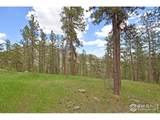 2820 Storm Mountain Dr - Photo 40