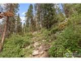 2828 Beaver Creek Rd - Photo 6