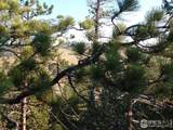 466 Cucharas Mountain Dr - Photo 6
