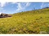 132 Sheep Mountain Ct - Photo 13