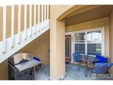 503 Lucca Dr - Photo 13