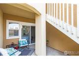 503 Lucca Dr - Photo 14