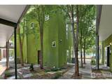 1114 Neon Forest Cir - Photo 3