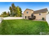 1805 Trumpeter Swan Dr - Photo 26