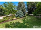 3725 Spring Valley Rd - Photo 37