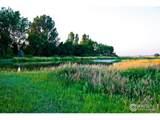 42908 County Road 29 - Photo 3
