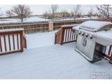 3895 Leopard St - Photo 25