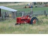 920 Deer Meadow Way - Photo 38