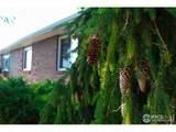 1315 Cummings Ave - Photo 29