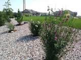 3881 Desert Rose Ct - Photo 35