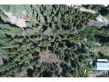 66 Blue Spruce Dr - Photo 11