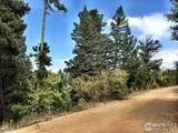 66 Blue Spruce Dr - Photo 3