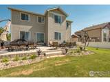 1705 Wales Dr - Photo 36