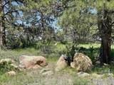 480 Lizard Head Mountain Dr - Photo 1