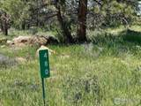 480 Lizard Head Mountain Dr - Photo 10