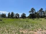 480 Lizard Head Mountain Dr - Photo 11