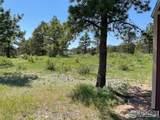 480 Lizard Head Mountain Dr - Photo 12