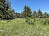 480 Lizard Head Mountain Dr - Photo 14