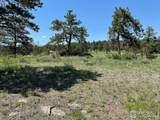 480 Lizard Head Mountain Dr - Photo 15