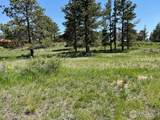 480 Lizard Head Mountain Dr - Photo 16