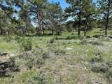 480 Lizard Head Mountain Dr - Photo 17