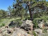 480 Lizard Head Mountain Dr - Photo 18