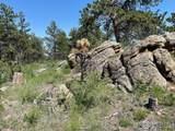480 Lizard Head Mountain Dr - Photo 20