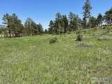 480 Lizard Head Mountain Dr - Photo 21