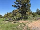 480 Lizard Head Mountain Dr - Photo 22