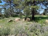 480 Lizard Head Mountain Dr - Photo 3